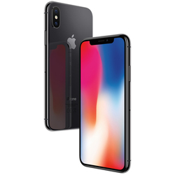 Apple iPhone X 64Gb (серый космос) :::