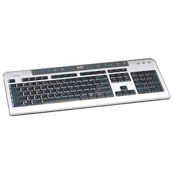 BTC 6301 Silver-Black USB (черно-серебристая)