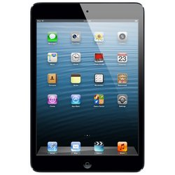 Apple iPad mini 64Gb Wi-Fi + Cellular Black MD536 (черный) :