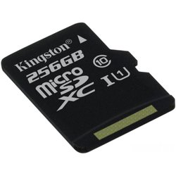 Kingston microSDXC 256Gb Class 10 UHS-I w/o adapter (SDCS/256GBSP)