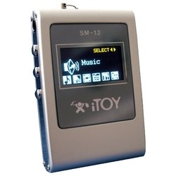 itoy sm-12 256mb