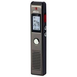 Ritmix RR-100 2Gb