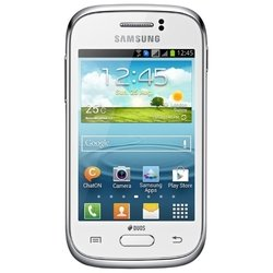 Samsung Galaxy Young S6312 (белый) :::