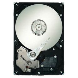 seagate st31000640ss
