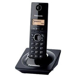 Panasonic KX-TG1711RUB (������)