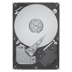seagate st9600105ss