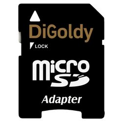 digoldy microsd 2gb + sd adapter