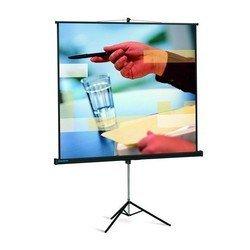 Экран на штативе Projecta 213x213см Professional (10430110) 1:1
