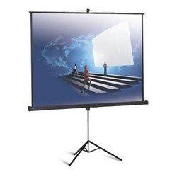 Экран на штативе Projecta 152x152см ProView (10430112)
