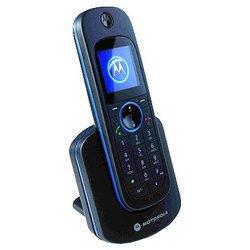 Motorola D1101