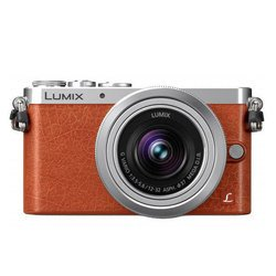 ��������� panasonic lumix dmc-gm1 kit (���������)