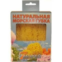 Натуральная детская морская губка в коробке (7 Морей Грасс Форм) (6.0 - 6.5 дюймов)