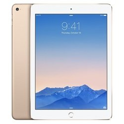 Apple iPad Air 2 64Gb Wi-Fi (MH182RU/A) (золотистый) :::