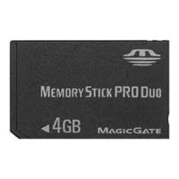 team group memory stick pro duo 4gb