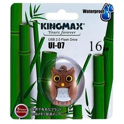 Kingmax UI-07 Owl 16GB