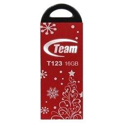 Team Group T123 16GB
