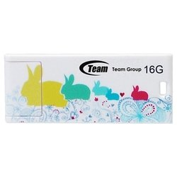 team group c116 16gb