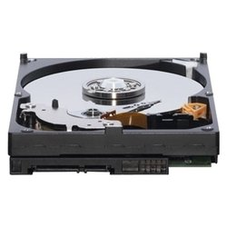 ���� western digital wd5000aakx 500gb