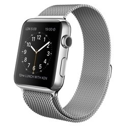Apple Watch with Milanese Loop (42мм)