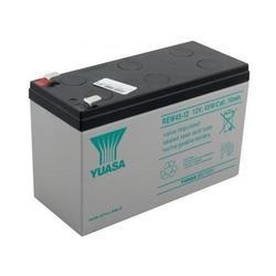 Аккумуляторная батарея Yuasa (REW45-12)