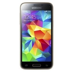Дисплей для Samsung SM-G800F GALAXY S5 mini в сборе (R0006027) (золотистый)