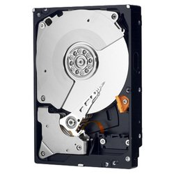 Western Digital WD5003AZEX 500Gb