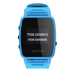 Gator Caref Watch