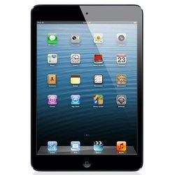Apple iPad mini 16Gb Wi-Fi + Cellular (4G) Black (черный) :