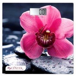 CENTEK CT-2421 Orchid