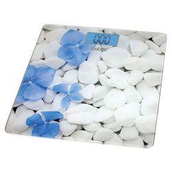 BBK BCS3002G (белый, голубой)