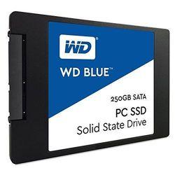 WD WDS250G1B0A
