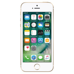 Apple iPhone SE 128Gb (золотистый) :::