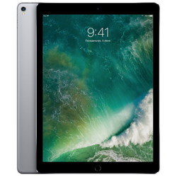 Apple iPad Pro 12.9 (2017) 256Gb Wi-Fi (серый космос) :::