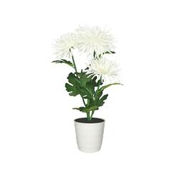 Старт Хризантема 3 (белый) - ОсвещениеНастольные лампы и светильники<br>Декоративный светильник на светодиодах, общая мощность 0.9Вт, питание: 2 батарейки АА.