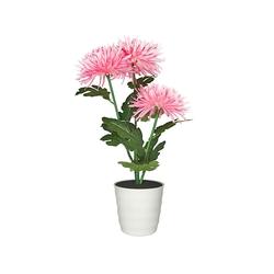 Старт Хризантема 3 (розовый) - ОсвещениеНастольные лампы и светильники<br>Декоративный светильник на светодиодах, общая мощность 0.9Вт, питание: 2 батарейки АА.