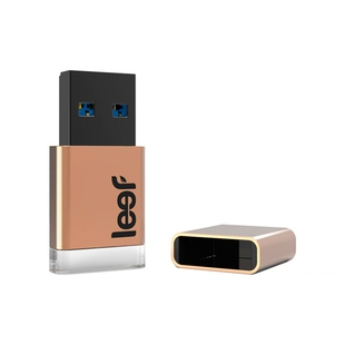 Leef Magnet 32GB Copper Edition (LFMGN-032COP)