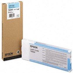 Картридж для Epson Stylus Pro 4800, 4880 (C13T606500 №T6065) (светло-голубой) (220 мл) - Картридж для принтера, МФУКартриджи<br>Совместим с моделями: Epson Stylus Pro 4800, Epson Stylus Pro 4880.
