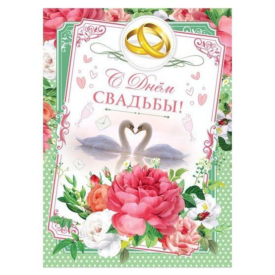 Картинки женский ноги туфли цветы выходе
