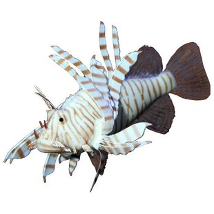 Фигурка для аквариума JBL MotionDeco Lionfish 12х9 см